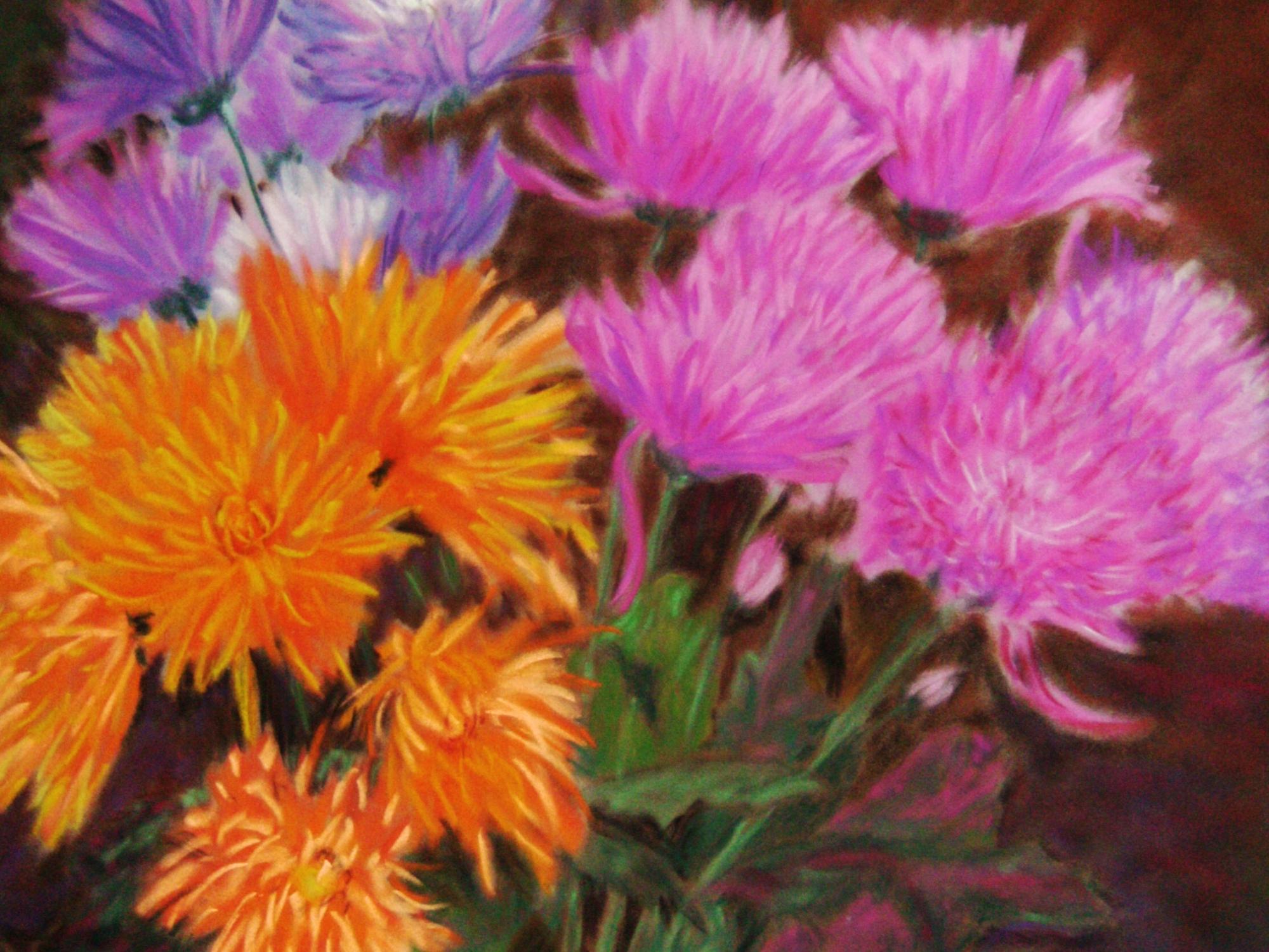 Chrysanthemums: pink orange purple, ArtHenning