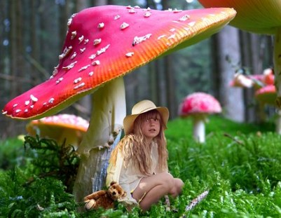 Pixabay photo, Girl under a Mushroom