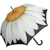 Daisy Design Umbrella