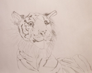 Drawing of a Tiger, ArtHenning